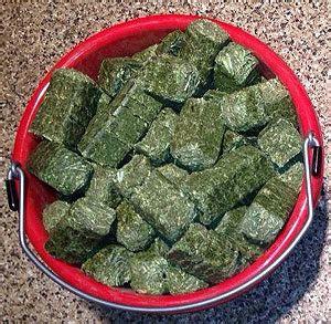 hay rite alfalfa premium cubes mini alfalfa cubes