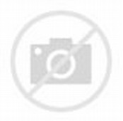 3D Animated Moving Cat Animation