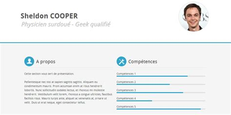 Resume Using Html And Css Modele Cv Html Css Cv Anonyme