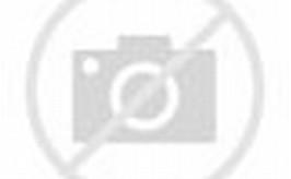 Gambar Peta Kutai Kartanegara | GAMBAR PETA INDONESIA DUNIA|TEMATIK ...