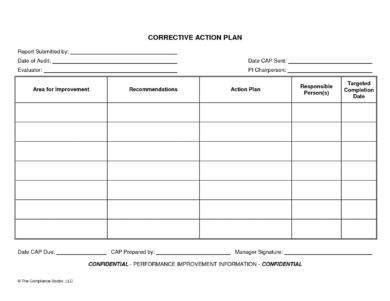 corrective action plan examples word  examples