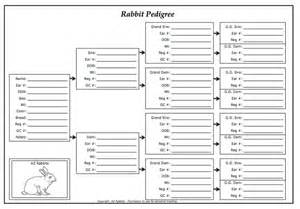 Rabbit Pedigree Template by Family Tree Chart Breeds Picture