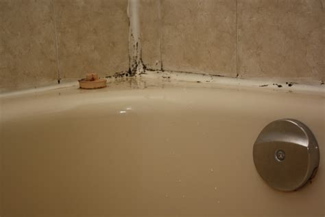 mildew in bathtub mississauga bathrooms mississauga bathrooms
