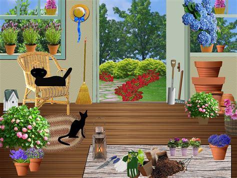 coltivazione ciclamino in vaso ciclamini coltivazione e arredamento in casa