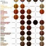 rusk hair color chart 17 best images about happy hair on shops updo
