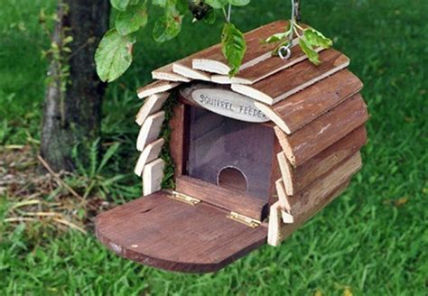 squirrel houses for sale 4 unbelievable squirrel house designs