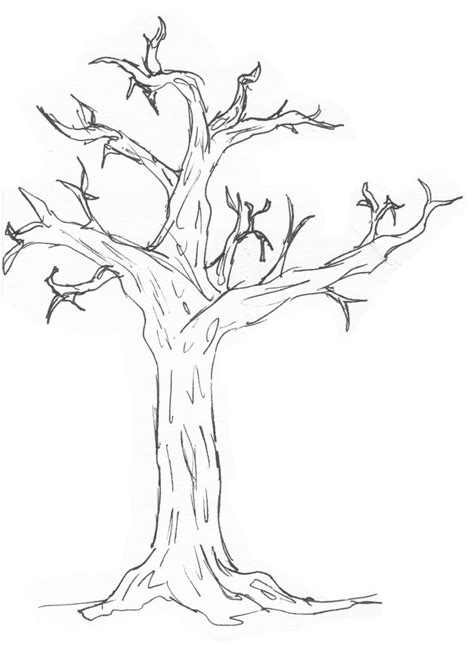 easy tree coloring page simple drawing of a tree drawing sketch picture
