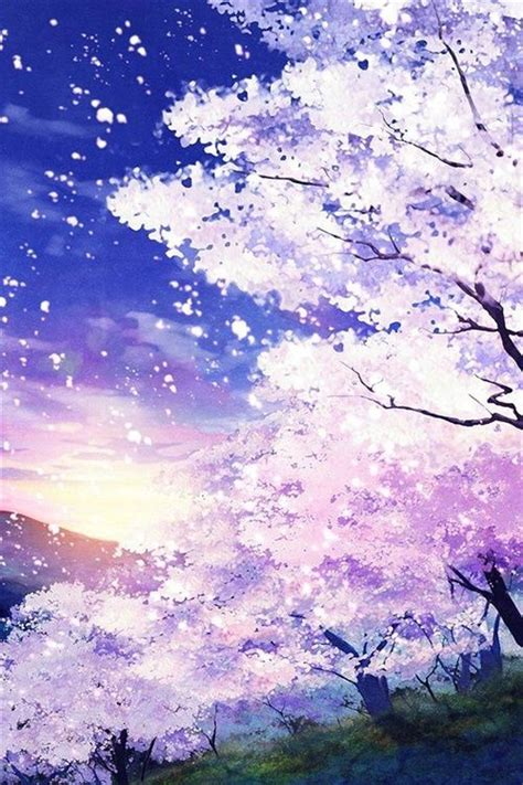 cherry tree anime anime sky blue pink cherry blossoms arte cherry blossoms blossoms