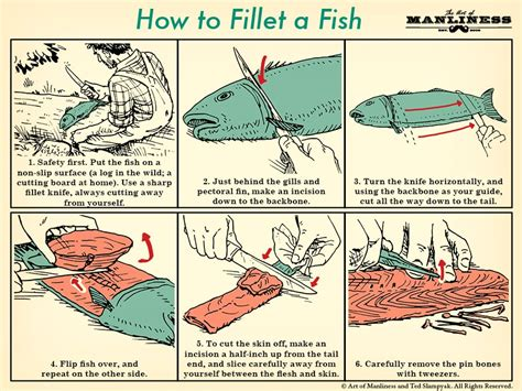 how to cook new year fish how to fillet a fish an illustrated guide the of