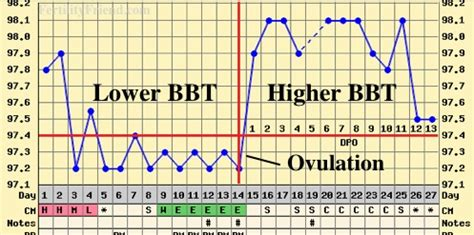 Termometer Kesuburan senang cara kesan waktu subur melalui suhu badan