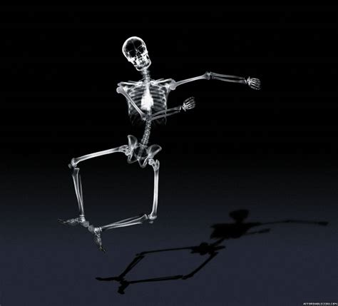 x ray incredible human x ray pictures photoshop graphics 626
