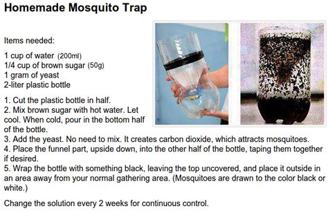 diy mosquito trap mosquito trapping lesley voth