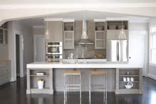Grey Kitchen Cabinets Pictures Astonishing Grey Kitchen Cabinets The Futuristic Color