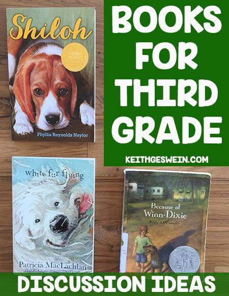third grade picture books novel studies archives keith geswein