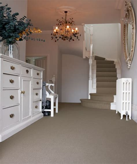 choosing the right carpet colors for your home shag carpet