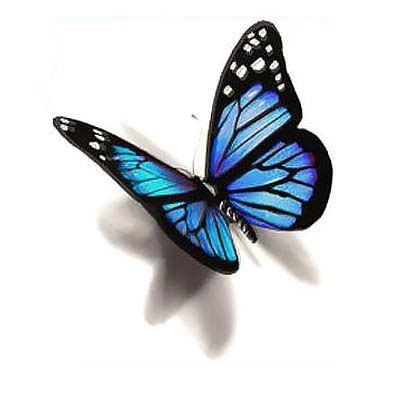 blue 3d butterfly tattoo design butterfly tattoo designs