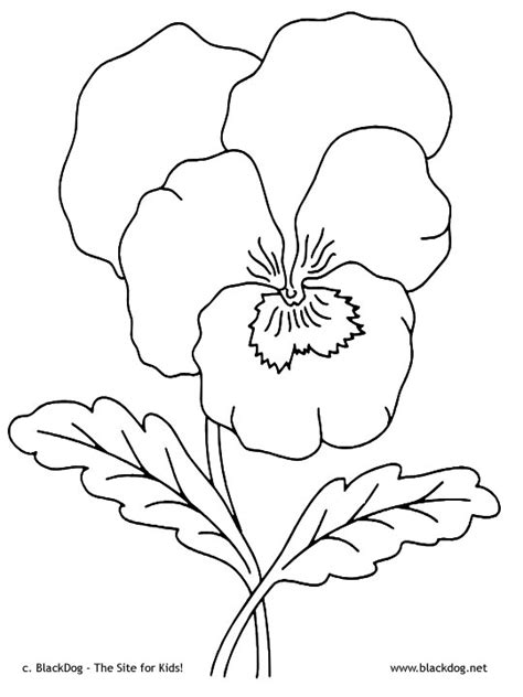 flower crown coloring page flower crown tumblr coloring coloring pages