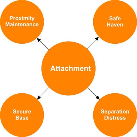 attachment theory in building connections between children and attachment theory characteristics of attachment