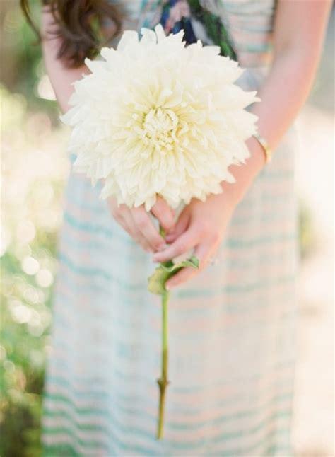 Best Single Stem Flowers Wedding Whimsical Ranch Engagement