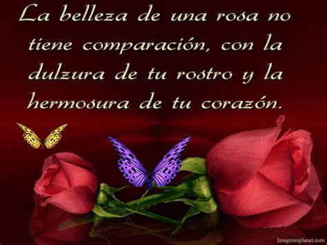 imagenes con frases de amor con flores hermosas frases de amor para dedicar