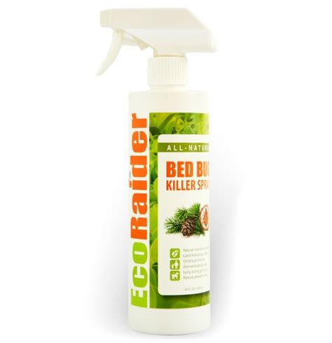 the best bed bug spray what is the best bed bug spray for home bed bug treatment site