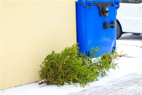 recycling artificial trees 11729 how to recycle artificial tree artificial tree shop