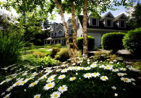 Garden Danville by House With Front Garden Monument Realty San Ramon Realtor 174