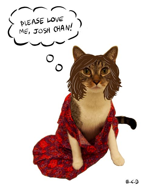 rachel bloom cats jewcy how to dress your cat jewishly for halloween