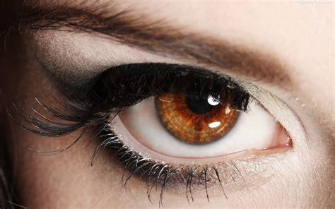 rosemary clooney beautiful brown eyes beautiful brown eyes wild anal