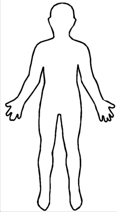 human figure template template human this is your indexhtml page clipart