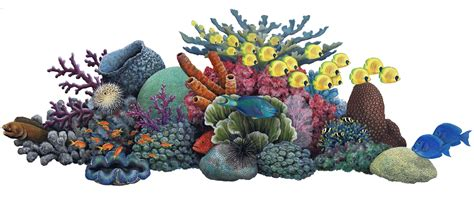 Sculpture Home Decor by Coral Reef Mural Wallsofthewild Com