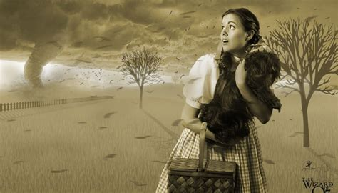 wizard of oz background wizard of oz backgrounds gallery 48 plus pic wpw50536