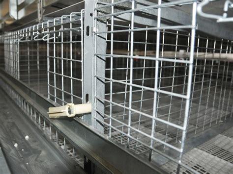 h frame broiler battery cage system cage system