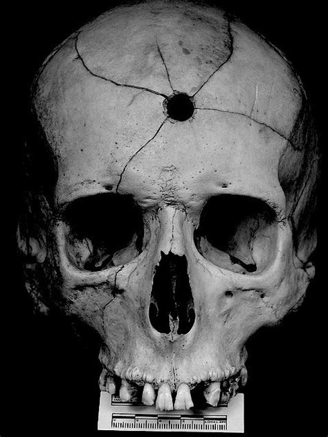 17 Best Images About Raras On Pinterest Skull With Bullet