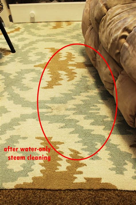 how to clean a rug without a steam cleaner steam clean wool area rug best rug 2018