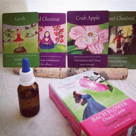 terapia con i fiori di bach fiori di bach test fiori di bach cos 232 il test dei