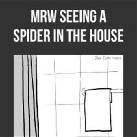 Spider In House Meme - mrw seeing a spider in the house by ayasenpai18 meme center