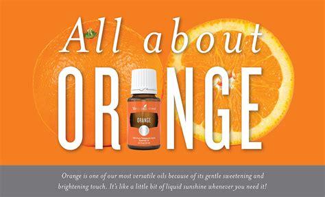 Living Essential Orange how to use orange essential living
