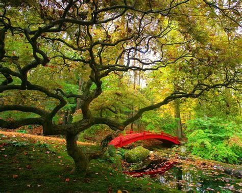 imagenes de jardines sustentables 壁纸1280 215 1024自然美景壁纸 自然美景壁纸图片 风景壁纸 风景图片素材 桌面壁纸