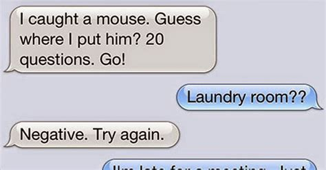 What Is Your Message by 15 Text Messages A Cat Would Send If Cats Could Actually Text