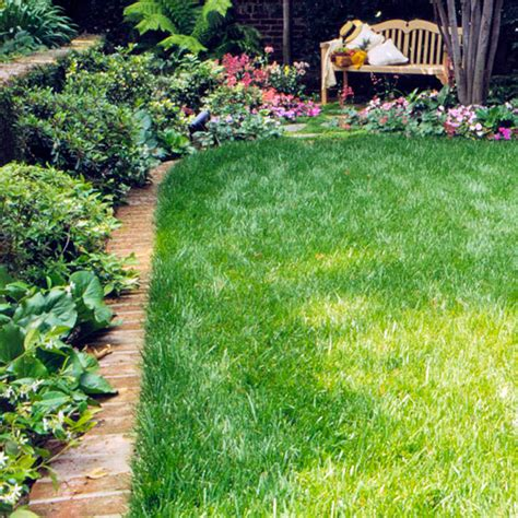 garden edging ideas   tools   maintain