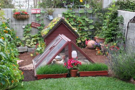 backyard homestead tloe s garden is right on time growing a greener world 174