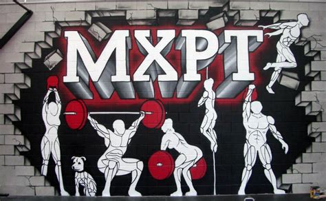 feature wall  mxpt gym  mt wellington gym decor