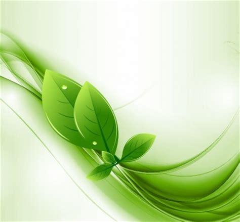 wallpaper daun mint eco daun dan hijau gelombang vektor vektor misc vektor