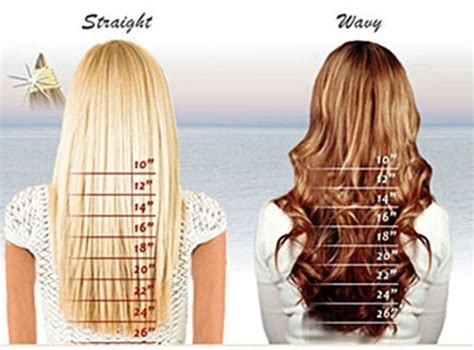 how long is a 14 inch for hair clip in remy real human hair extensions 20 inch dark brown