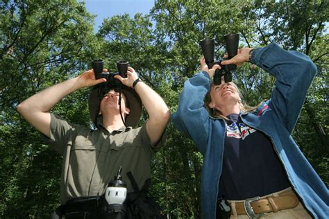 birdwatching binoculars just another wordpress com site