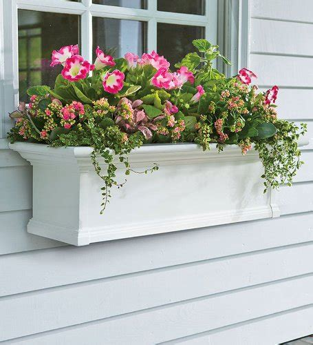 Planter Window by Window Planter Boxes Casual Cottage
