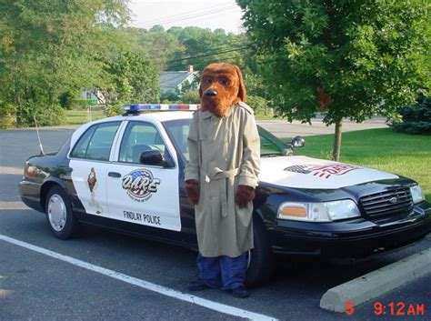 mcgruff the crime mcgruff the crime gets 16 years for 1 000 pot plants weapons including a grenade