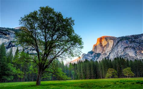 hd wallpaper for mac yosemite os x yosemite wallpaper hd wallpapersafari