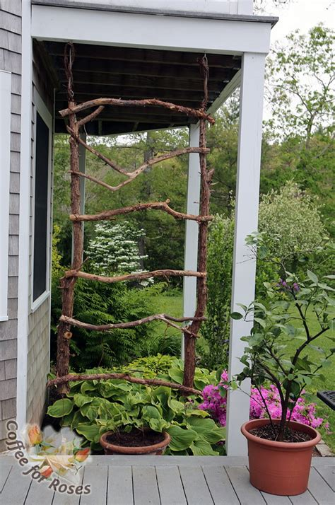 Diy Garden Trellis Ideas 20 Awesome Diy Garden Trellis Projects Hative